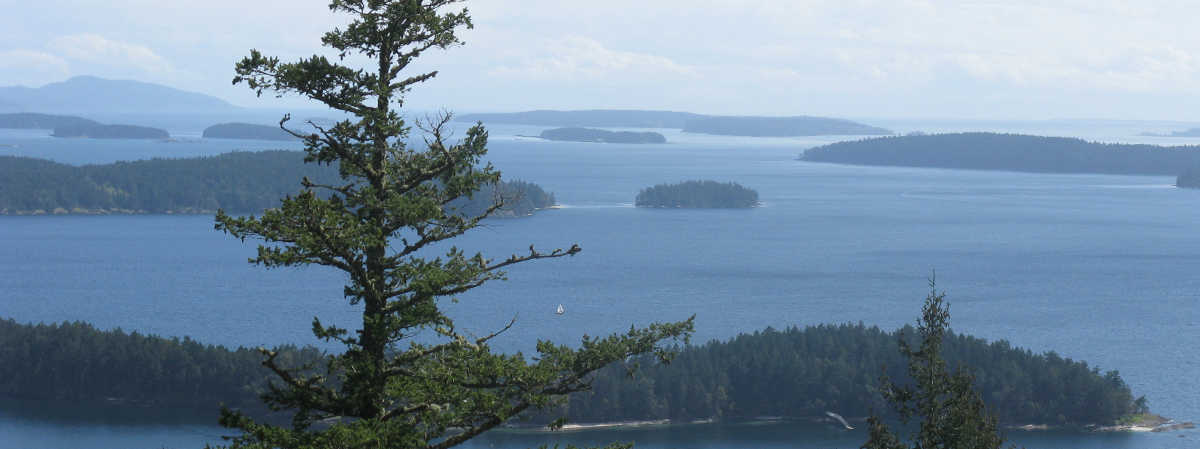 Salt_Spring_Island_Tour_Hike_Day_Trip_Nature_Walk_Best_Views